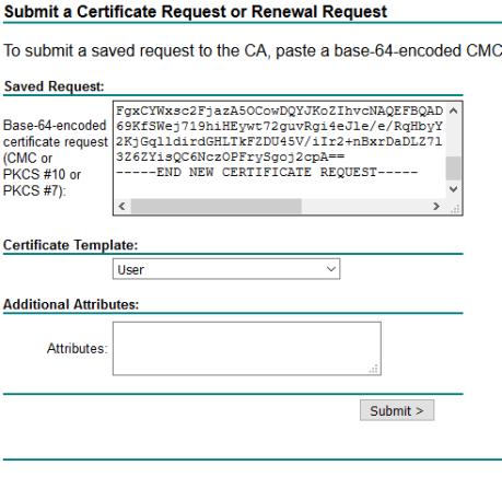 CSR Domain Certificate