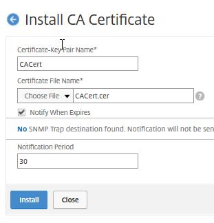 Net Scaler install CA